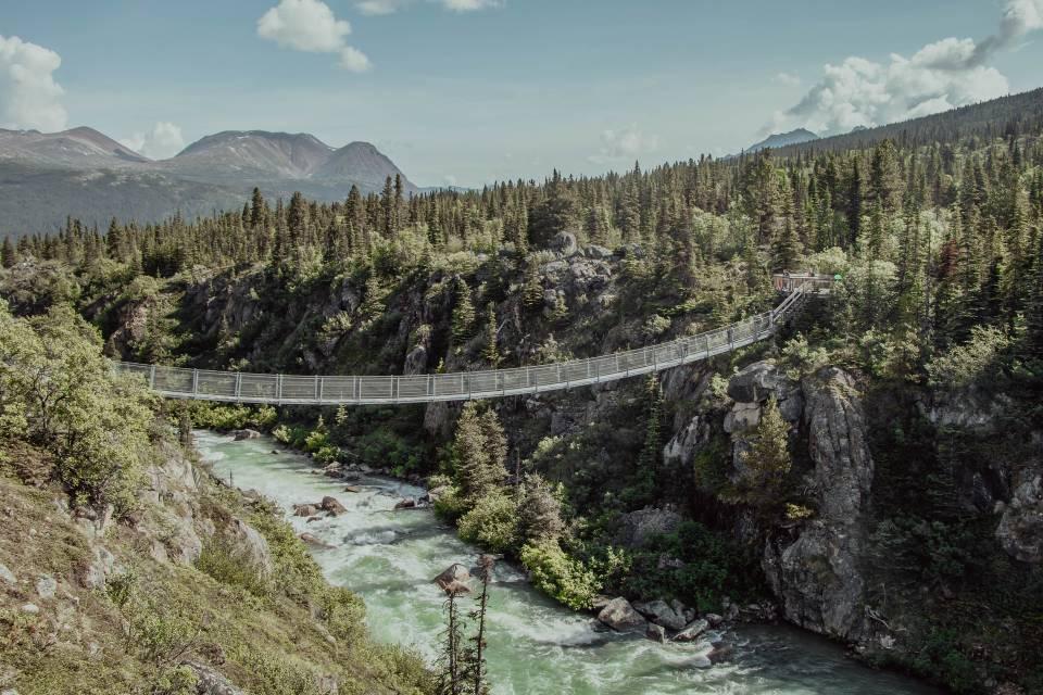 Suspension Bridge Over a River In a Gulch